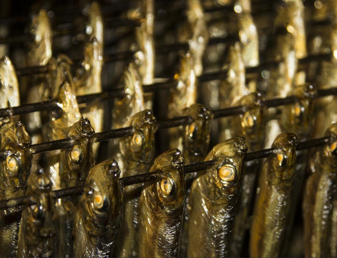 копчена риба